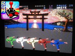 Un fantastico Kata in esecuzione durante il gioco in pausa. Potrete gustarvi tutte le tecniche presenti nel gioco, eseguite con perfetta sincronia dai 6 lottatori!